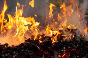 燃え上がる焚き火の炎の写真素材 [FYI03171050]
