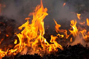 燃え上がる焚き火の炎の写真素材 [FYI03171053]