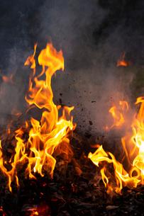 燃え上がる焚き火の炎の写真素材 [FYI03171056]