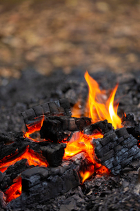 燃え上がる炭と炎の写真素材 [FYI03171069]