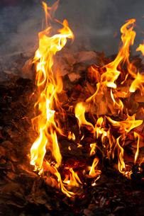 燃え上がる焚き火の炎の写真素材 [FYI03171076]