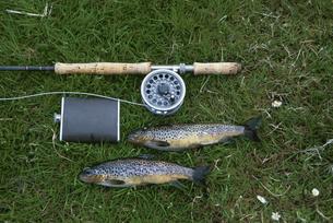 草の上の魚とリールとウイスキーボトルの写真素材 [FYI03171173]