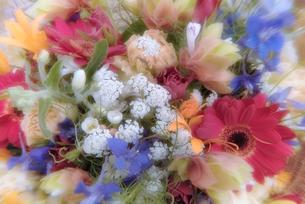 花束の写真素材 [FYI03171233]