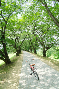 道に止まる自転車の写真素材 [FYI03171296]