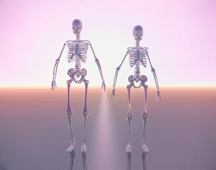 骸骨 CGの写真素材 [FYI03171346]