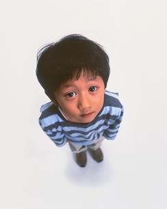 見上げる男の子の写真素材 [FYI03171394]