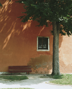 赤い壁と木陰のベンチの写真素材 [FYI03171904]