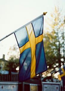 スウェーデンの国旗の写真素材 [FYI03171993]
