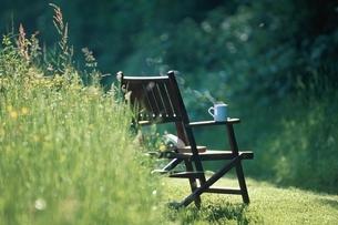 庭のイスとコーヒーカップの写真素材 [FYI03172101]