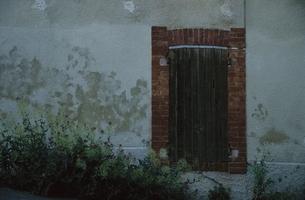 壁とレンガのドアと植物の写真素材 [FYI03172117]