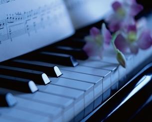 鍵盤と楽譜と花の写真素材 [FYI03172185]