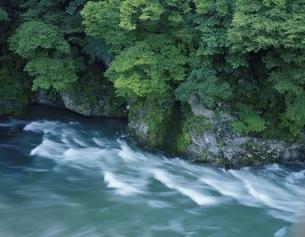 岩と流れ 水上町 群馬県の写真素材 [FYI03172541]