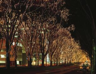 光のページェント 仙台 宮城県の写真素材 [FYI03172561]
