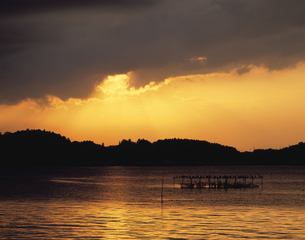 霞ヶ浦の夕暮れ 茨城県の写真素材 [FYI03172913]