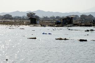 海水が流れ込んだ田畑の写真素材 [FYI03173318]