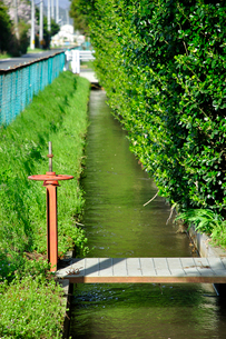 用水路の水門の写真素材 [FYI03173651]