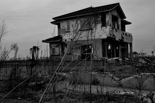 雑草の生い茂る住宅地跡の写真素材 [FYI03173779]