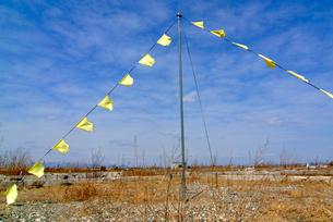 住宅跡地に掲げられた希望の黄色いハンカチの写真素材 [FYI03173795]