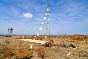 住宅跡地に掲げられた希望の黄色いハンカチの写真素材 [FYI03173796]
