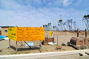 荒浜地区の再生を訴える看板と黄色いハンカチの写真素材 [FYI03173804]
