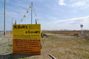 荒浜地区の再生を訴える看板と黄色いハンカチの写真素材 [FYI03173808]