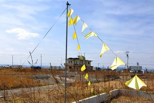 住宅跡地に掲げられた希望の黄色いハンカチの写真素材 [FYI03173810]