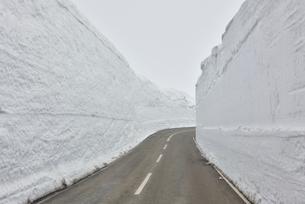 蔵王エコーライン・雪の回廊の写真素材 [FYI03174683]