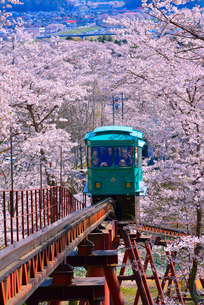 船岡城址公園の桜とスロープカーの写真素材 [FYI03174728]