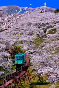 船岡城址公園の桜とスロープカーの写真素材 [FYI03174729]