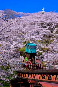 船岡城址公園の桜とスロープカーの写真素材 [FYI03174733]