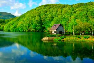 新緑の長老湖の写真素材 [FYI03174756]