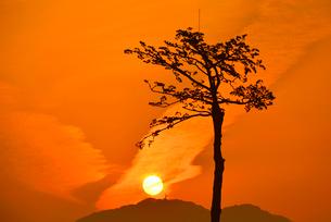 希望の一本松と朝日の写真素材 [FYI03175010]