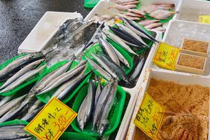 ゆりあげ港朝市で売られている生鮮食品の写真素材 [FYI03175043]