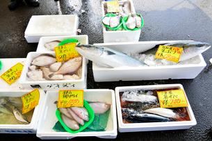 ゆりあげ港朝市で売られている生鮮食品の写真素材 [FYI03175074]