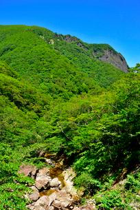 初夏の磐司岩の写真素材 [FYI03175171]