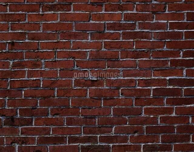 レンガの壁の写真素材 [FYI03175280]