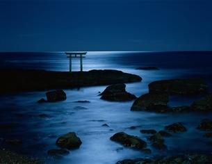月光の海と鳥居 大洗町  茨城県の写真素材 [FYI03175362]