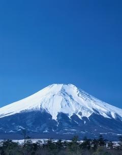 冬の富士山  忍野村 山梨県の写真素材 [FYI03175384]