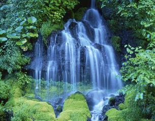 苔に覆われた岩と新緑に囲まれた吐龍の滝 大泉村 山梨県の写真素材 [FYI03175422]