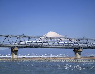 鉄橋を走る新幹線500系 富士川鉄橋 静岡県の写真素材 [FYI03175610]