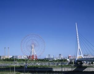 パレットタウンと観覧車 東京都の写真素材 [FYI03175633]