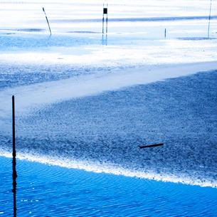 一色海岸の潮干狩りの浜の写真素材 [FYI03175932]