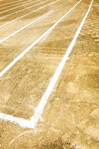 運動会準備で引かれた白線の写真素材 [FYI03176110]