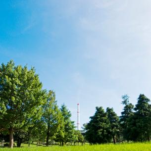 清掃工場の煙突が見える緑の公園の写真素材 [FYI03176156]