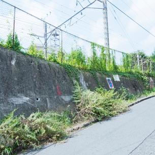 夏草が繁る線路脇の写真素材 [FYI03176190]