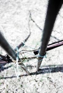壊れたフェンスを縛る針金の写真素材 [FYI03176266]