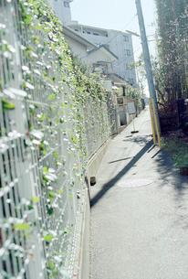 表通りに向かう住宅街の細い坂道の写真素材 [FYI03176279]