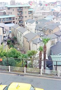 野毛山公園から眺めた横浜市外地の写真素材 [FYI03176314]
