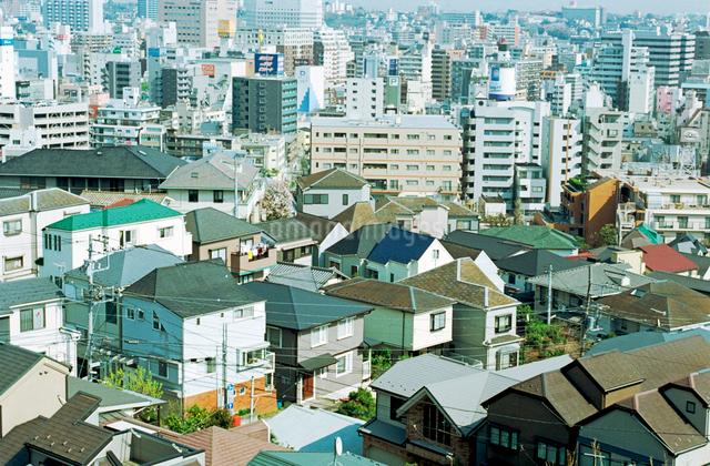 野毛山から横浜港を望む晴天の住宅とビルの市街地の写真素材 [FYI03176399]