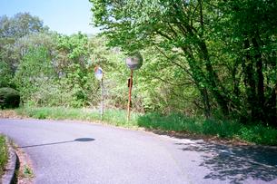 細い山道のカーブミラーの写真素材 [FYI03176404]